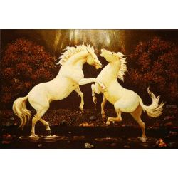 "Picture of Amber ""Horses"""